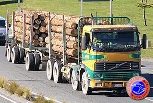 Автопоезд для длинномерных грузов с кониками для укладки и закрепления бревен на автомобиле-тягаче и прицепе-роспуске